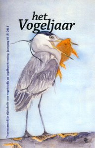 Illustratie: Blauwe Reiger, door Caroline Elfferich
